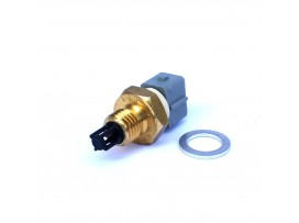 Intake Air Temperature Sensor (IAT)